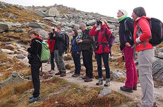 Bénévoles et chercheurs en sortie découverte pendant les Rendez-vous du CREA Mont-Blanc 2014