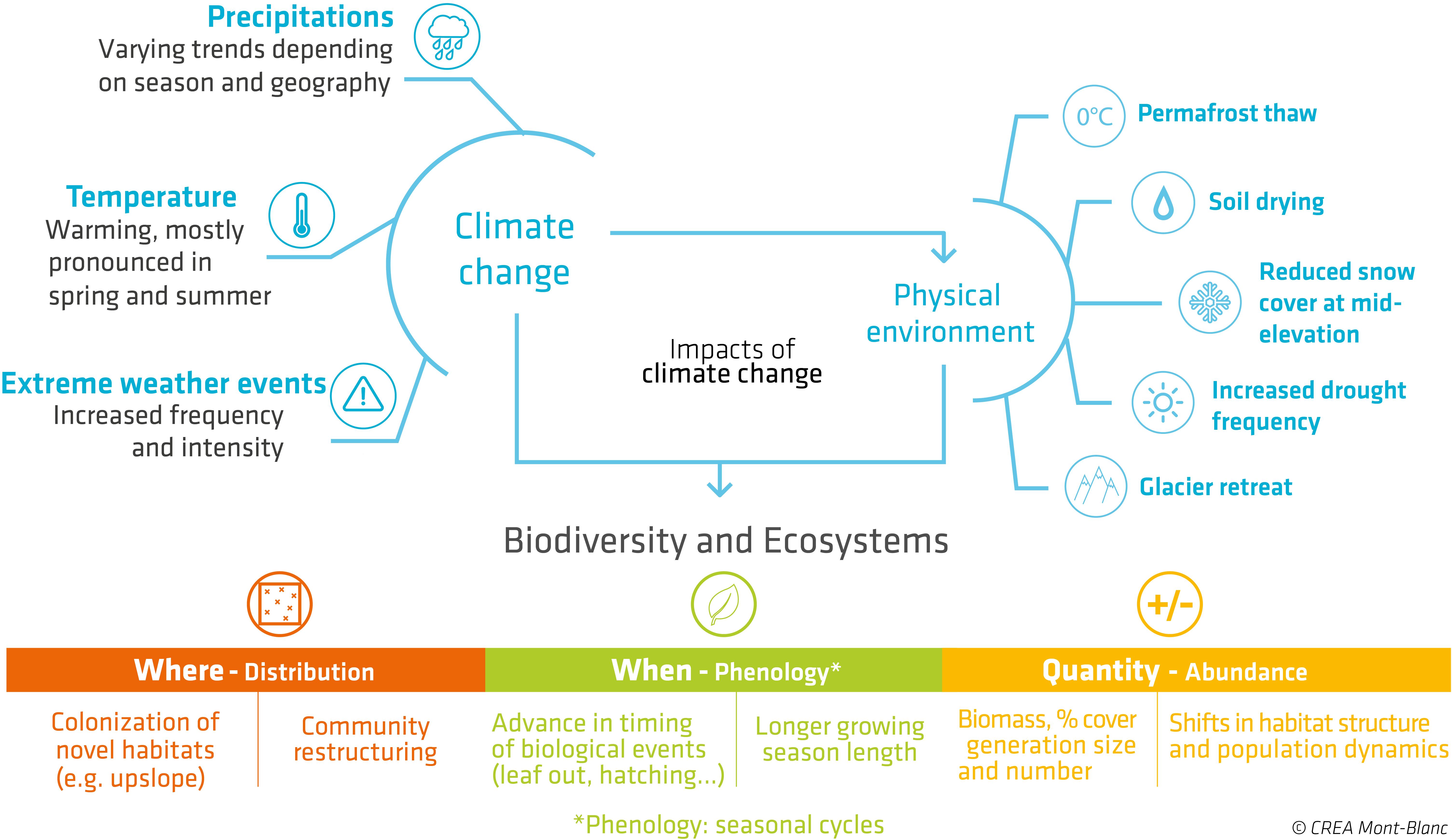 schema_global_impact_cc_biodiv_creamontblanc_en.png